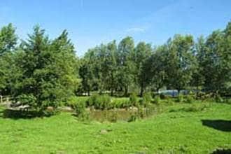 Ferienhaus Le Chalet en Bois 1 (58665), Quend, Somme, Picardie, Frankreich, Bild 11
