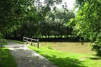 Ferienhaus Le Chalet en Bois 1 (58665), Quend, Somme, Picardie, Frankreich, Bild 14