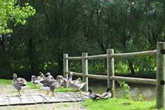 Ferienhaus Le Chalet en Bois 3 (58667), Quend, Somme, Picardie, Frankreich, Bild 7