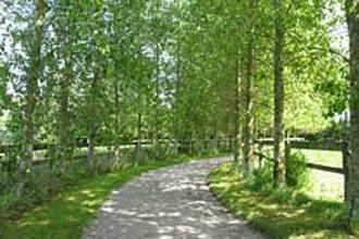 Ferienhaus Le Chalet en Bois 3 (58667), Quend, Somme, Picardie, Frankreich, Bild 16