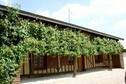 Meer info: Vakantiehuisje Carlin, Ceffonds (Champagne Ardennen)