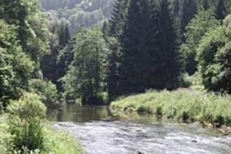 Ferienwohnung Grün (152520), Gransdorf, Südeifel, Rheinland-Pfalz, Deutschland, Bild 10