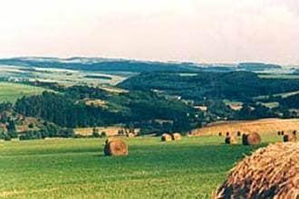 Ferienwohnung Grün (152520), Gransdorf, Südeifel, Rheinland-Pfalz, Deutschland, Bild 12