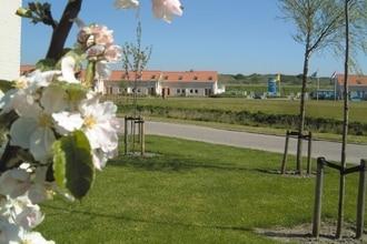 Ferienhaus Vakantiepark de Soeten Haert (409819), Renesse, , Seeland, Niederlande, Bild 5