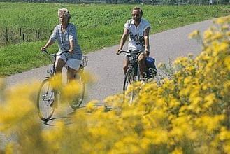 Ferienhaus Vakantiepark de Soeten Haert (409819), Renesse, , Seeland, Niederlande, Bild 17