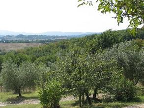 Ferienwohnung Ginepro (319293), Rignano Sull'Arno, Florenz - Chianti - Mugello, Toskana, Italien, Bild 21