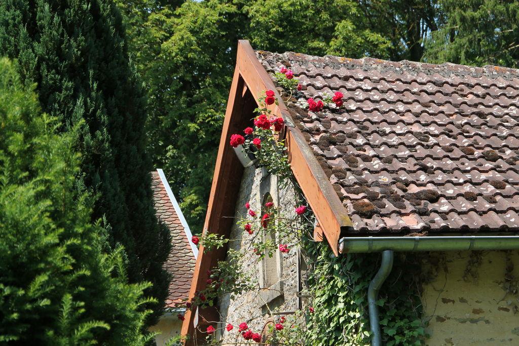 Prachtig kasteel in Anrosey met privé park en tennisbaan - Boerderijvakanties.nl