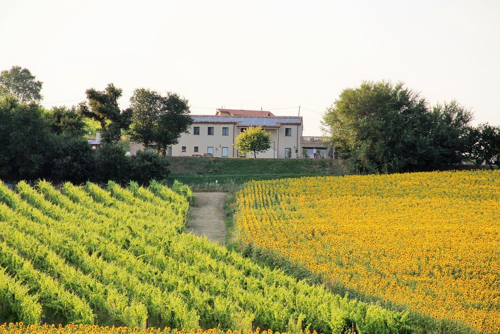 Loreto- Villa    te huur