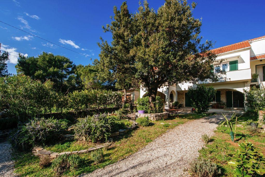 Vakantiewoning Kroatië, Dalmatie, Sukosan vakantiewoning HR-23206-05