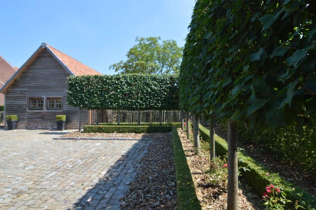 Vakantiewoning België, Limburg, Peer vakantiewoning BE-0002-72