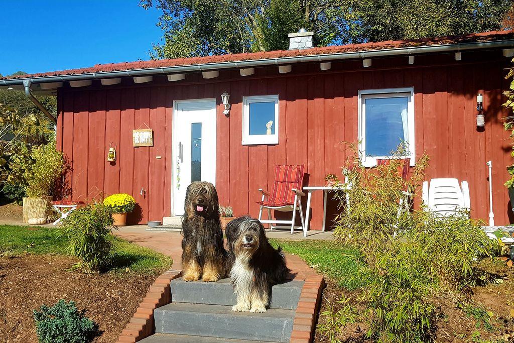 Gezellig vakantiehuis in het Ederbergland - honden zijn welkom - Boerderijvakanties.nl