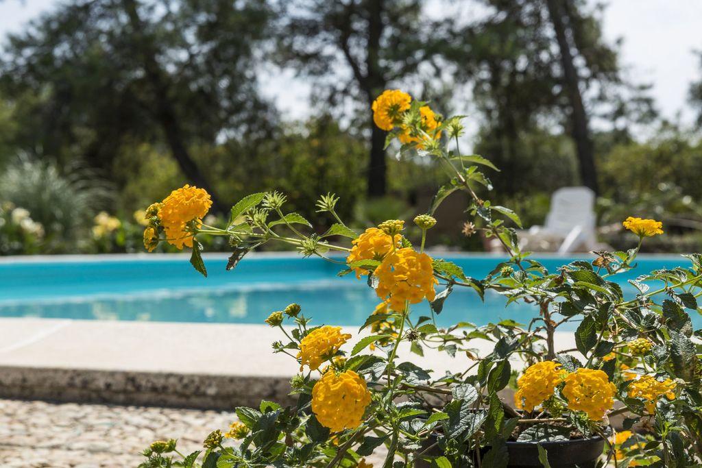 Vakantiewoning italie - Puglia Villa IT-00017-96 met zwembad  met wifi
