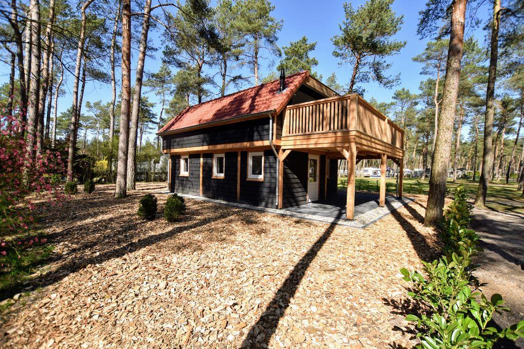 Fantastisch moderne bosvilla aan de rand van de Veluwe - Boerderijvakanties.nl
