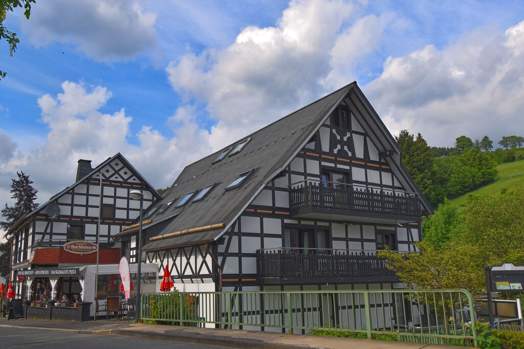Exclusief vakantieappartement op de bovenste verdieping met balkon en wellnessruimte in Olsberg-Elpe - Boerderijvakanties.nl