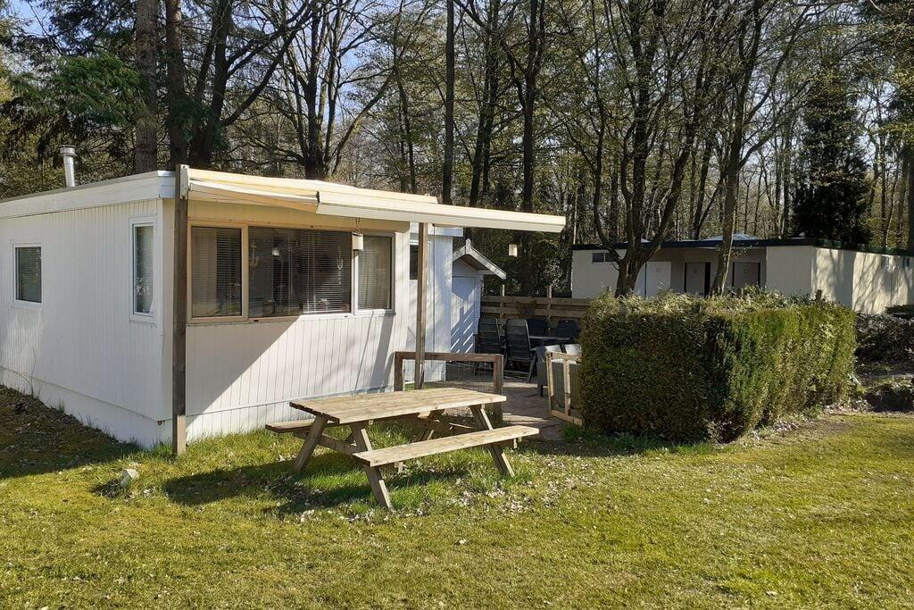 Ruim chalet in de bossen van Drenthe kruisend aan Friesland en Overijssel - Boerderijvakanties.nl