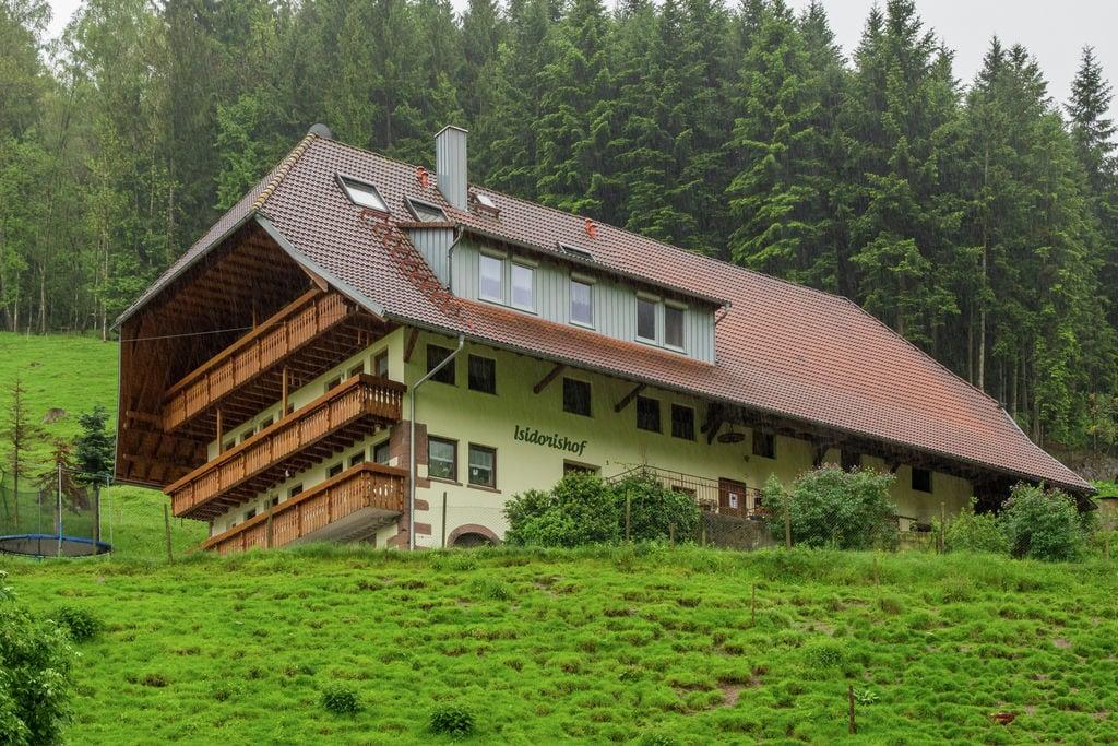 Knus appartement in Mühlenbach met een balkon - Boerderijvakanties.nl