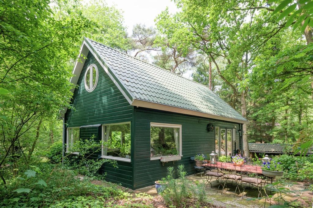 Comfortabele, gezellig ingerichte vakantiewoning in een bosrijk gebied - Boerderijvakanties.nl