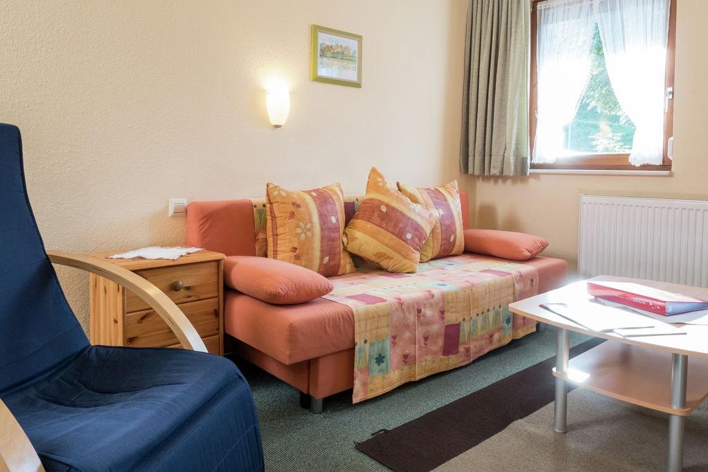 Comfortabel appartement in Feldberg met gedeeld terras - Boerderijvakanties.nl