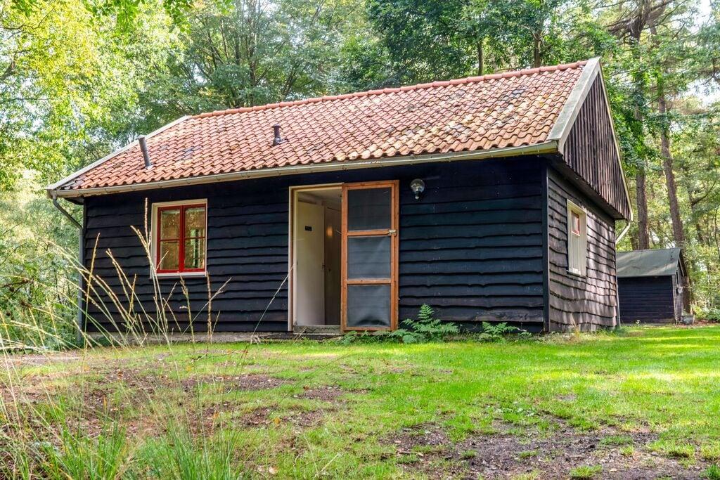 Vakantiehuis verscholen in het bos, in Vechtdal - Boerderijvakanties.nl