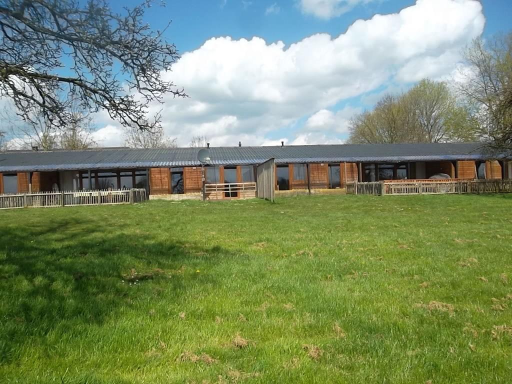 Ferienhaus Vakantiehuisjes de Betuwe 2 (681913), Kesteren, Rivierenland, Gelderland, Niederlande, Bild 2