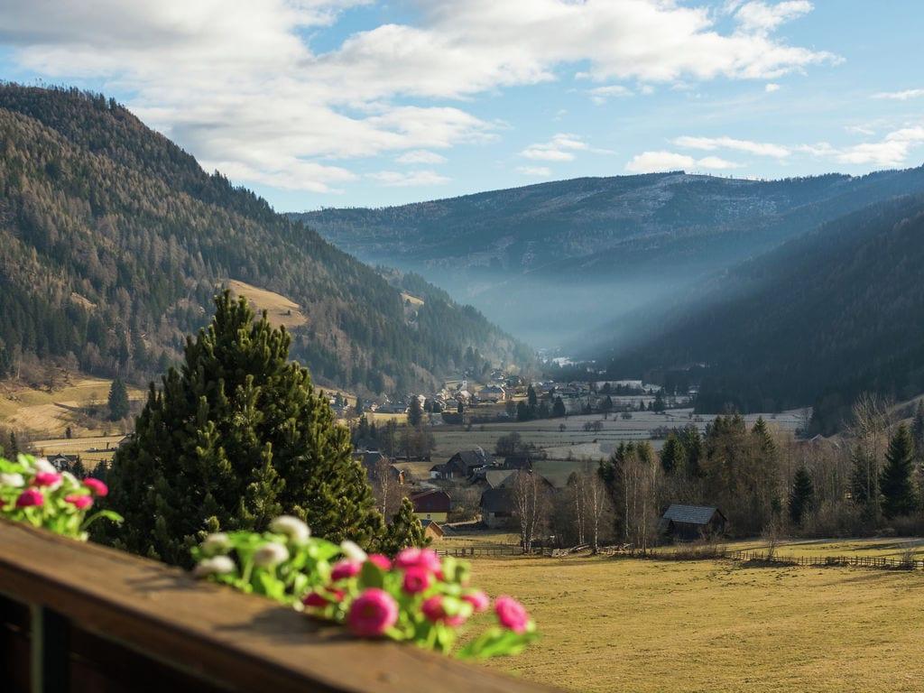 Appartement de vacances Alpenrose (679231), Thomatal, Lungau, Salzbourg, Autriche, image 20