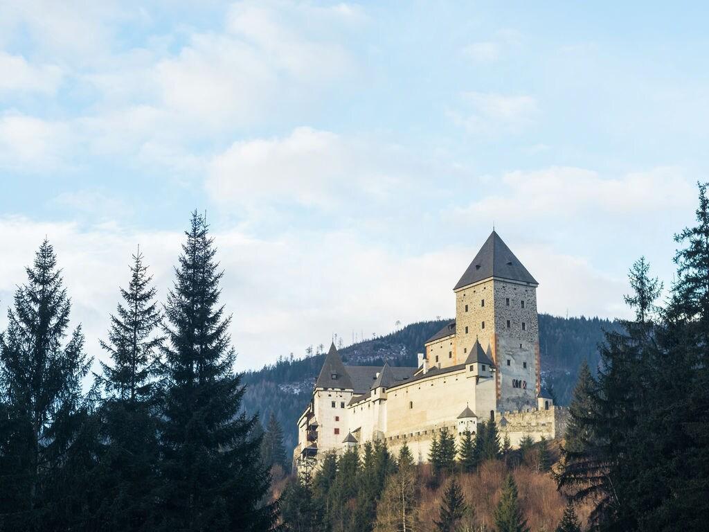 Appartement de vacances Alpenrose (679231), Thomatal, Lungau, Salzbourg, Autriche, image 31
