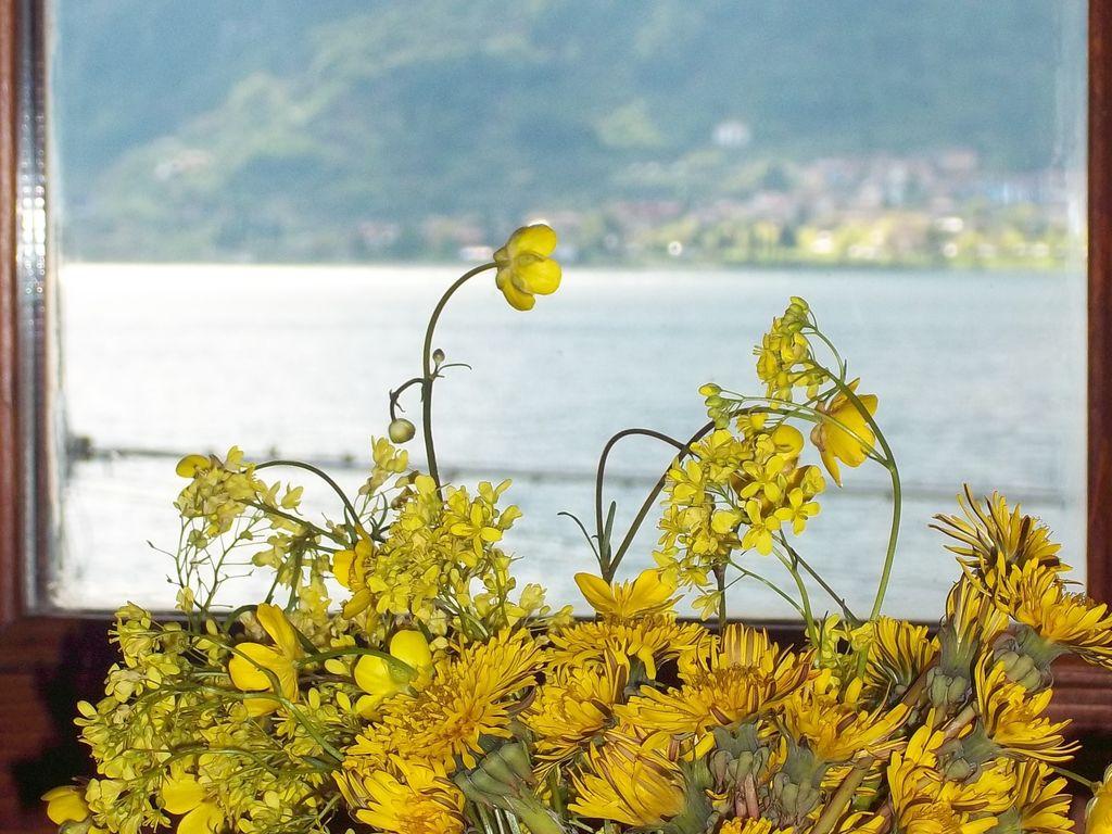 Ferienwohnung Fienile Regoli Due (683581), Idro, Brescia, Lombardei, Italien, Bild 13
