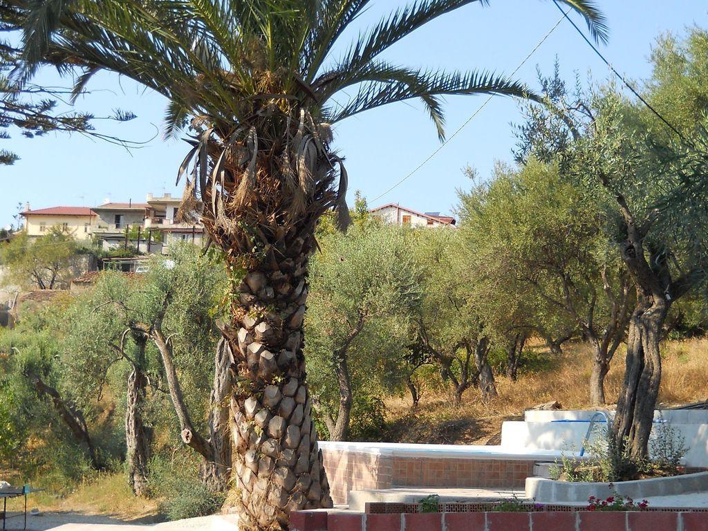 Maison de vacances Schönes Ferienhaus mit Pool in Gioiosa Marea (757930), Gioiosa Marea, Messina, Sicile, Italie, image 15