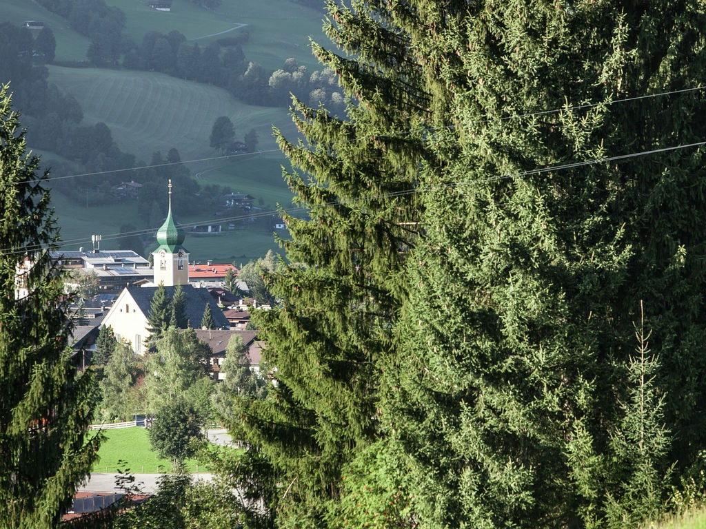 Appartement de vacances Glonersbühelhof (699419), Westendorf, Kitzbüheler Alpen - Brixental, Tyrol, Autriche, image 36