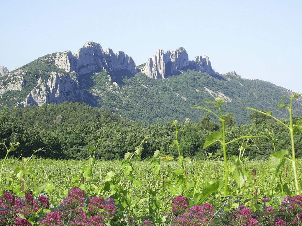 Ferienwohnung Amandier VIII (715400), Valréas, Vaucluse, Provence - Alpen - Côte d'Azur, Frankreich, Bild 20