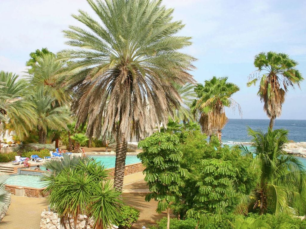 Kenepa Mambo Beach Ferienwohnung in Mittelamerika und Karibik