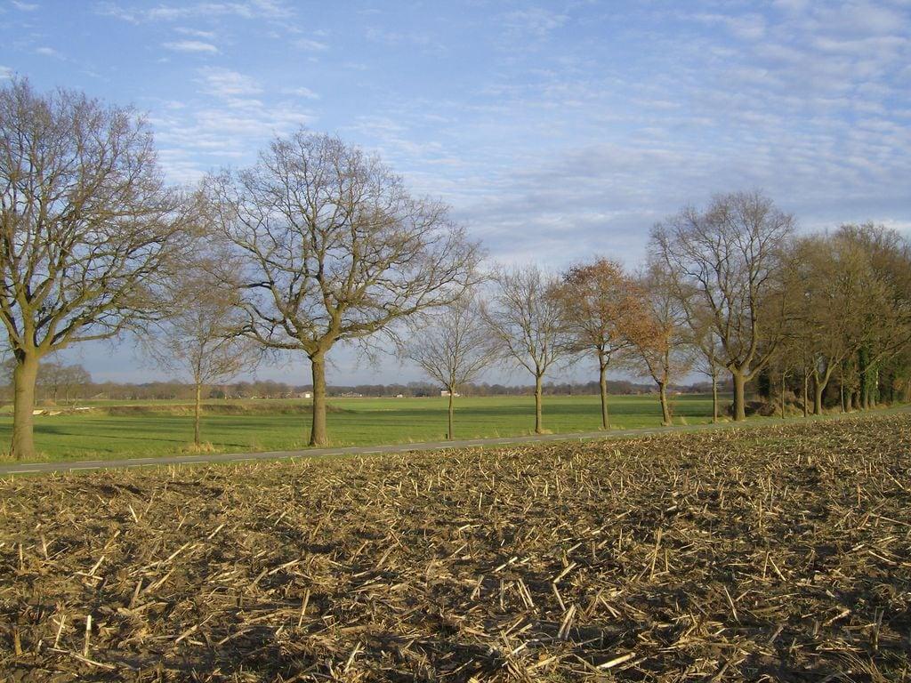 Ferienhaus Dekenkist (953628), Geesteren GLD, Achterhoek, Gelderland, Niederlande, Bild 33