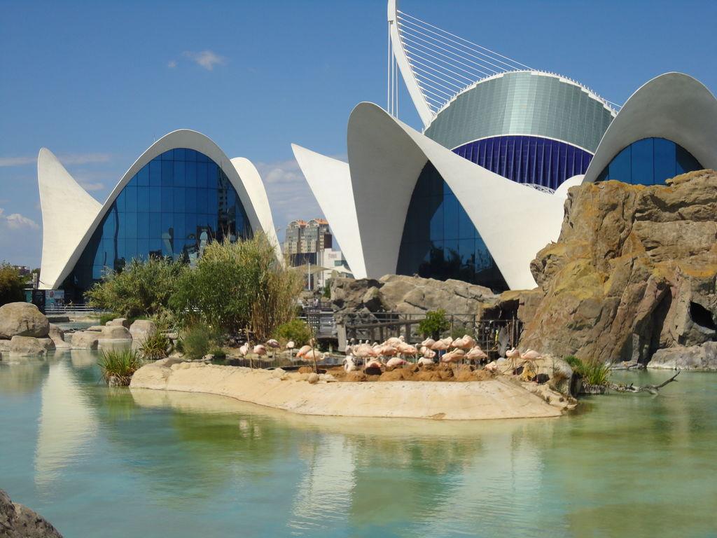 Maison de vacances Palomas (802523), Mazarron, Costa Calida, Murcie, Espagne, image 33