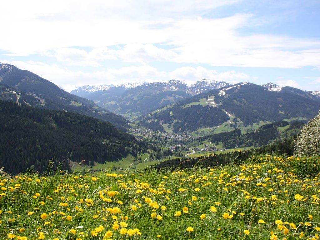 Maison de vacances Obersteffengut XL (802080), Wagrain, Pongau, Salzbourg, Autriche, image 22