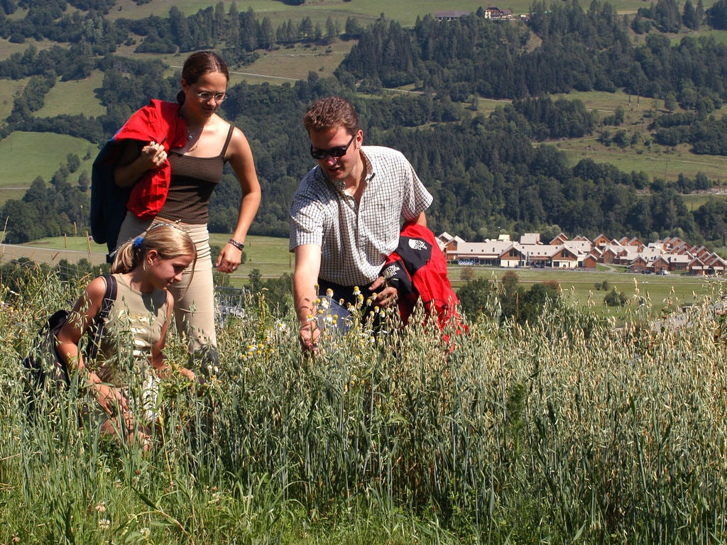 Ferienhaus Geräumiges Chalet beim Skigebiet in Sankt Georgen ob Murau (832351), St. Georgen am Kreischberg, Murtal, Steiermark, Österreich, Bild 28