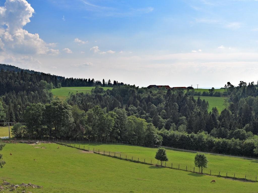 Ferienwohnung Stocking (1029628), Waldkirchen, Bayerischer Wald, Bayern, Deutschland, Bild 9