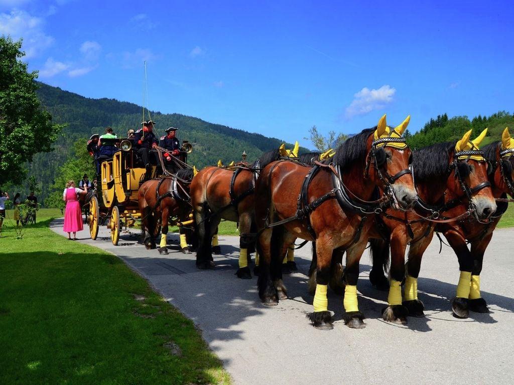 Maison de vacances Algerhof 1 (876762), Abtenau, Tennengau, Salzbourg, Autriche, image 28