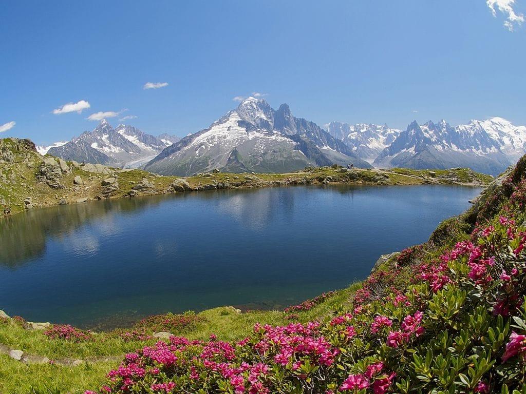 Ferienwohnung Rose (883147), Chamonix Mont Blanc, Hochsavoyen, Rhône-Alpen, Frankreich, Bild 18
