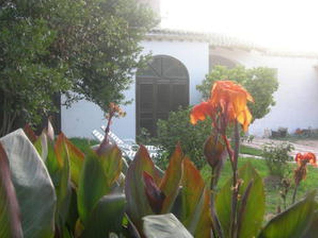 Holiday house Mulino (957054), Mazara del Vallo, Trapani, Sicily, Italy, picture 14