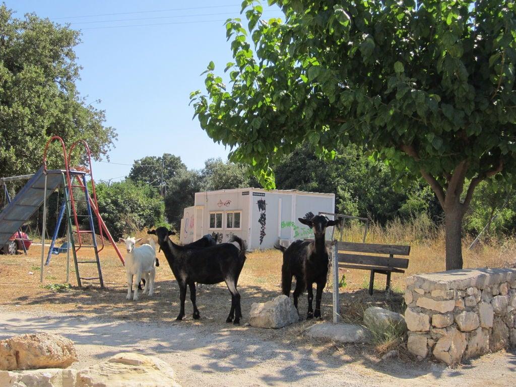Ferienhaus Villa Cocoon (992927), Prines, Kreta Nordküste, Kreta, Griechenland, Bild 44