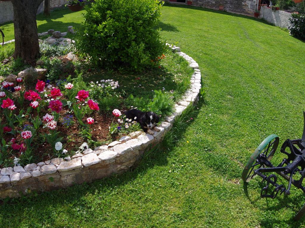 Ferienwohnung Slavica II (984932), Šajini, , Istrien, Kroatien, Bild 38