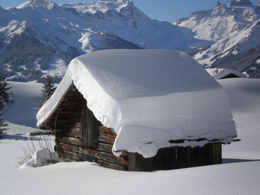 Appartement de vacances Lotte (1540122), Silbertal, Montafon, Vorarlberg, Autriche, image 21