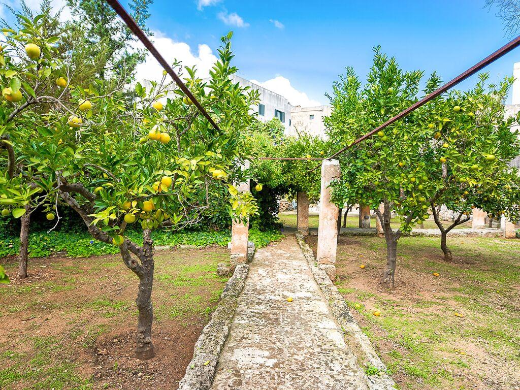 Ferienhaus Idyllisches Ferienhaus in Lecce, Apulien nahe Stadtzentrum (1041024), Casarano, Lecce, Apulien, Italien, Bild 23