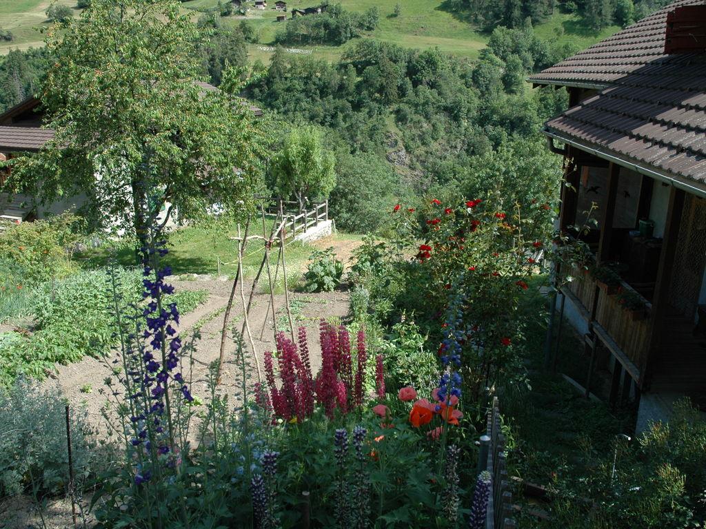 Holiday apartment Sparrhorn (1016874), Mörel, Aletsch - Goms, Valais, Switzerland, picture 12
