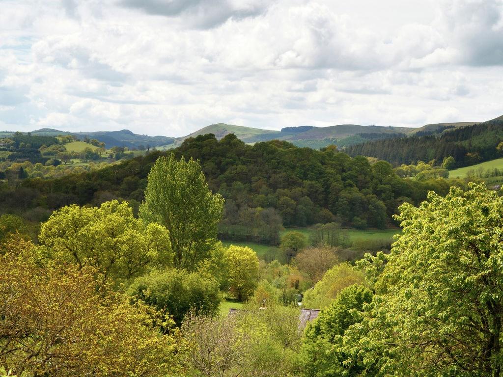 Holiday house Ty Gorof (1483558), Rhandirmwyn, West Wales, Wales, United Kingdom, picture 28