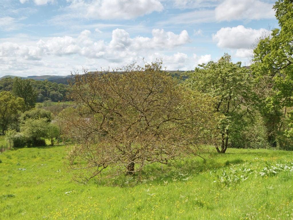 Holiday house Ty Gorof (1483558), Rhandirmwyn, West Wales, Wales, United Kingdom, picture 29