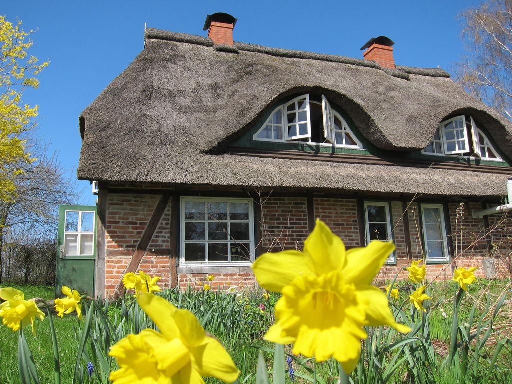 Ferienhaus Großes Ferienhaus mit eigenem Garten in Pronstorf (1082996), Pronstorf, Schleswig-Holstein Binnenland, Schleswig-Holstein, Deutschland, Bild 6