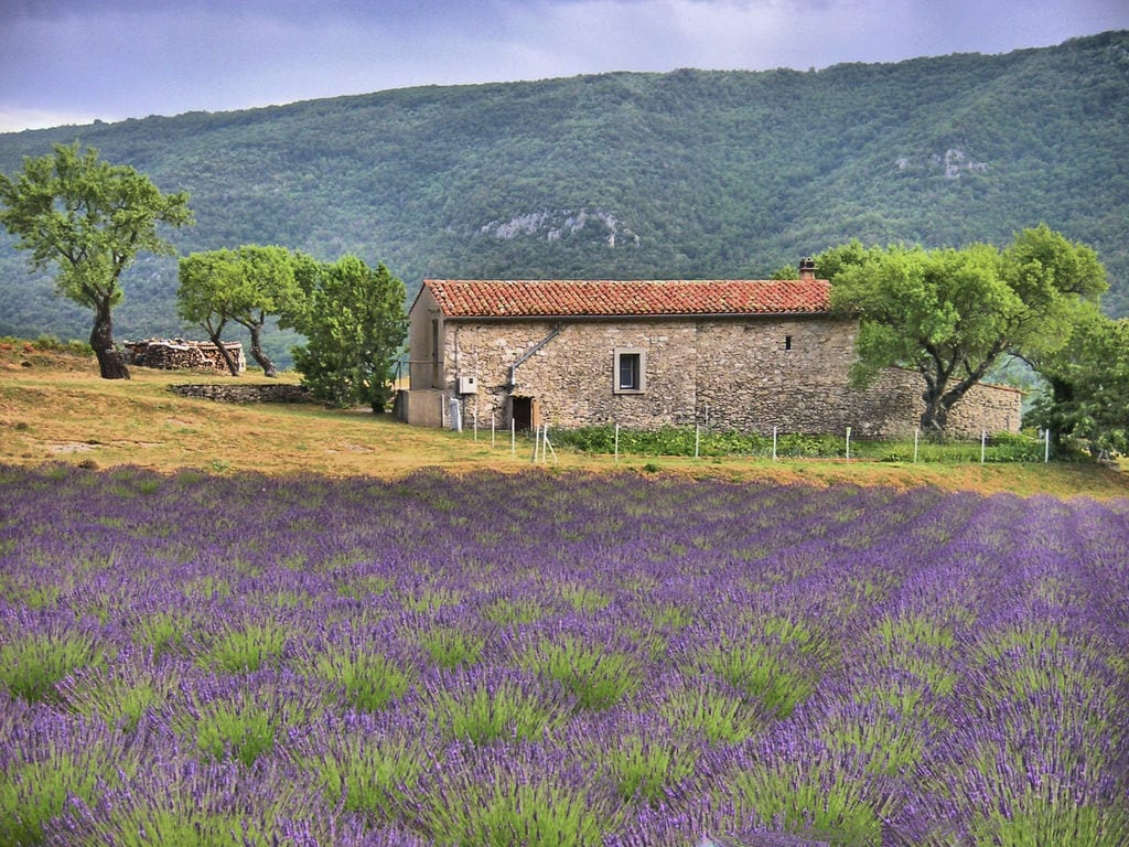 Ferienhaus Vakantiehuis Mer et Provence (1082888), Peymeinade, Alpes Maritimes, Provence - Alpen - Côte d'Azur, Frankreich, Bild 26