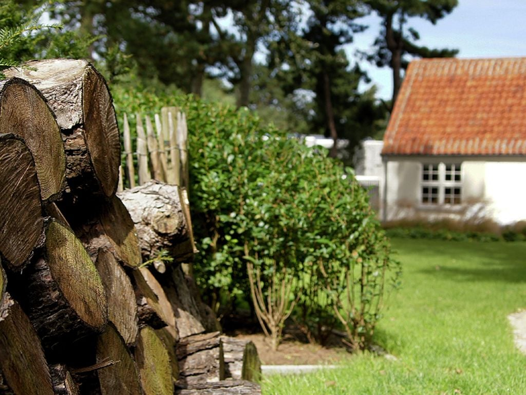 Ferienhaus Villa Deman (1625456), Koksijde, Westflandern, Flandern, Belgien, Bild 28