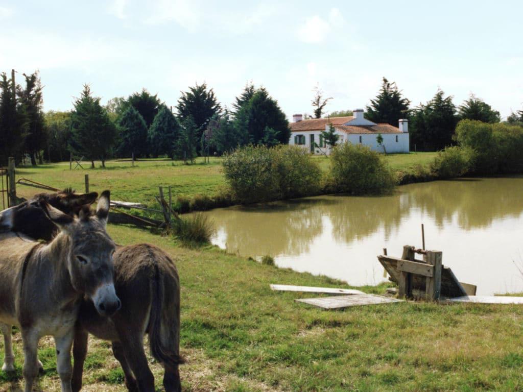 Ferienhaus Gemütliches Ferienhaus in Saint-Gervais in Strandnähe (1657973), Beauvoir sur Mer, Atlantikküste Vendée, Pays de la Loire, Frankreich, Bild 4